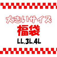 大きいサイズ福袋LL3L4L2018